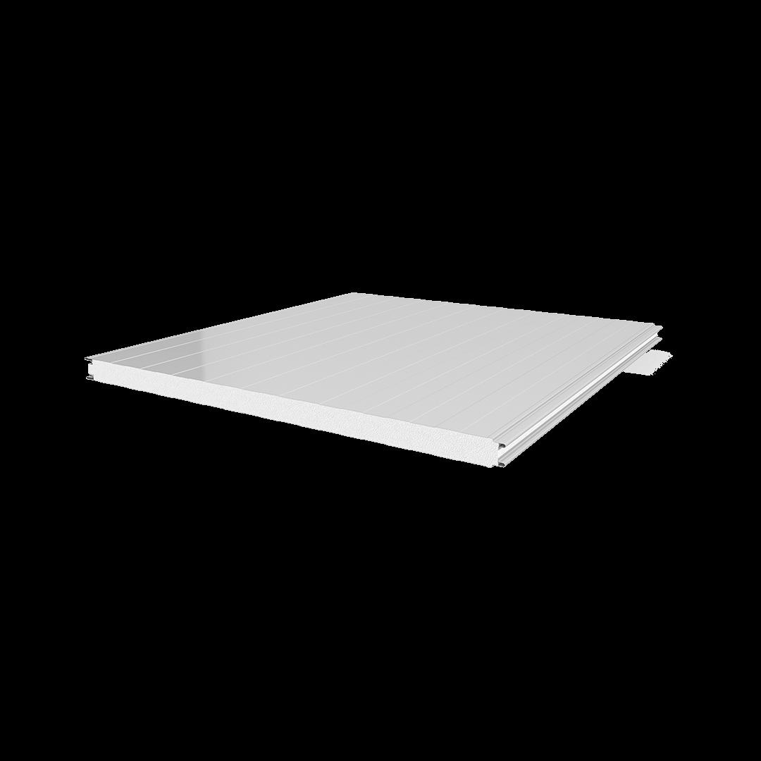 ألواح من نوع غرف التبريد رقاقة معدن – EPS – رقاقة معدن